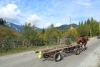 A wood transporter horse-drawn wagon on a mountain street - A horse carriage on the street