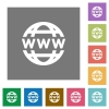 WWW globe square flat icons - WWW globe flat icon set on color square background.