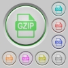 GZIP file format push buttons - GZIP file format color icons on sunk push buttons