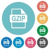 GZIP file format flat round icons - GZIP file format flat white icons on round color background.