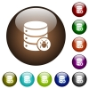 Database bug color glass buttons - Database bug white icons on round color glass buttons