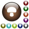 Mushroom color glass buttons - Mushroom white icons on round color glass buttons