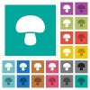 Mushroom square flat multi colored icons - Mushroom multi colored flat icons on plain square backgrounds. Included white and darker icon variations for hover or active effects.