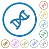 DNA molecule icons with shadows and outlines - DNA molecule flat color vector icons with shadows in round outlines on white background