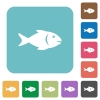 Fish rounded square flat icons - Fish white flat icons on color rounded square backgrounds