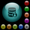 Database privileges icons in color illuminated glass buttons - Database privileges icons in color illuminated spherical glass buttons on black background. Can be used to black or dark templates