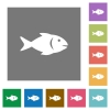 Fish square flat icons - Fish flat icons on simple color square backgrounds