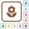 Flower simple icons in color rounded square frames on white background - Flower simple icons