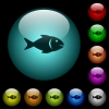 Fish icons in color illuminated glass buttons - Fish icons in color illuminated spherical glass buttons on black background. Can be used to black or dark templates