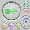 256 bit rsa encryption push buttons - 256 bit rsa encryption color icons on sunk push buttons
