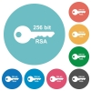 256 bit rsa encryption flat round icons - 256 bit rsa encryption flat white icons on round color backgrounds