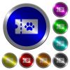 pet shop discount coupon luminous coin-like round color buttons - pet shop discount coupon icons on round luminous coin-like color steel buttons