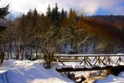 Bridge over a creek in winter - Winter bridge