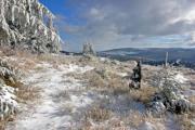 Winter landscape on a sunny day - Winter landscape