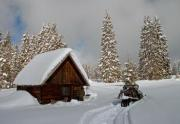 A small, wooden, snow-covered cottage in winter - A small cottage in winter