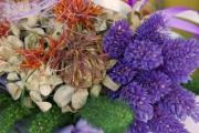 Detail of a bouquet of dried flowers - Colorful dried flowers