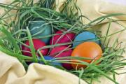 Colorful Easter eggs in a basket and grass nest - Easter eggs in a nest