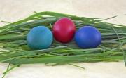 Closeup of three Easter eggs on grass - Three brightly painted Easter eggs