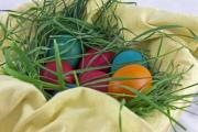 Colorful Easter eggs in a basket and grass nest - Easter eggs in grass nest