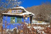 Colorful small house with beehives in the backgound - Colorful house in winter