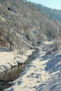 A stream in winter with snowy trees - Winter stream