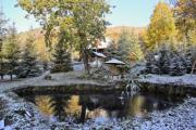 Mountain garden with a fishpond covered by snow - The first snow