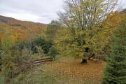Beautiful view from a mountain garden in autumn - Autumn landscape