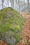 Closeup of a big stone covered with moss - Mossy stone