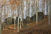 Beech forest in autumn with big rocks - Rocky autumn forest