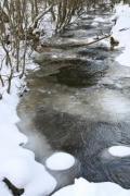 Detail of a little creek in winter time - Winter creek