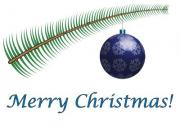 A simple christmas greeting card with fir branch and ornament - Merry Christmas
