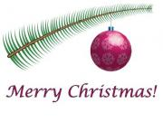 Merry Christmas label with evergreen twig and ornament - Merry Christmas!