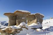 Wind-carved stone mushrooms (2200 metres) in the Southern Carpathians, in Transylvania (nature reserve) - Erosion