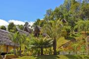 Wooden houses in the jungle of Madagascar - Tropical village