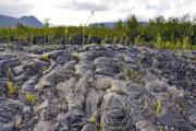 Black volcanic pumice on Reunion - Black pumice