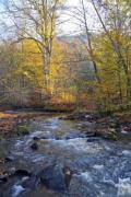 A rapid mountain stream with autumnal scenery - Rushing mountain stream