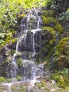 A little, cascading waterfall on mossy stones - Small waterfall