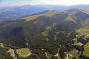 Aerial photo of a winding road along trees in the Carpathians  - Winding road from above