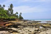 Rocky coast on the tropical island - Flat rocks on Grande Comore