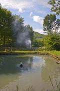 Artificial pond in a garden in the mountains - Garden pond