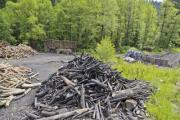 Wood pile and some heaps of wood in a charcoal burner camp - Camp of charcoal burners