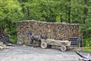 Wood pile made by charcoal burners - Wood pile