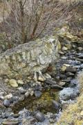 Little stream with lot of stones - Stony stream