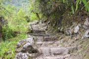 Old staircase to Machu Piccu in Peru - Staircase in the jungle