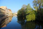 The nice riverside of Crișul Repede with a row of houses in Oradea - River in the city