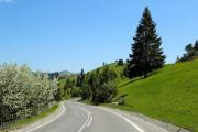 A road leading by green hills in Gyimes Valley in Székely Land - Green hills
