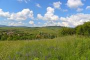 A nice summer landscape with beautiful cumuli - Summer scenery