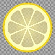 A slice of lemon. Vector illustration on transparent background. - A Slice of Lemon