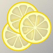 Vector illustration on transparent, changeable background. The slices can be used separately. - Three Slices of Lemon