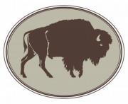 Buffalo. Hand-drawn illustration. Design for logo, t shirt, bag etc. - Buffalo logo